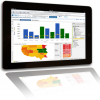 Business Intelligence Trends for 2013